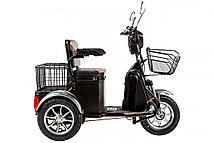 Электрический трицикл Rutrike S1 V2 с большой корзиной