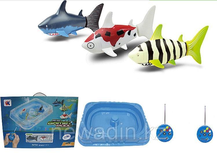 Игровой набор из 2 радиоуправляемых акул с бассейном - фото 1