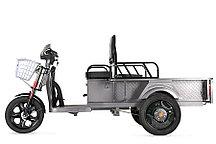 Электрический трицикл Rutrike D1 ГП 1200 60V900W