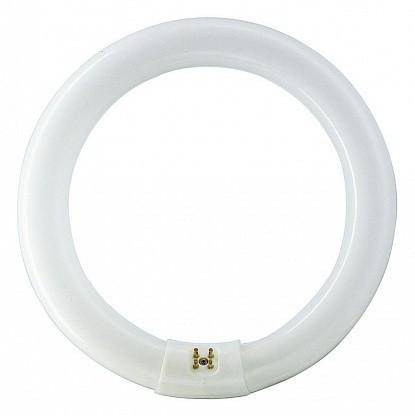 Лампа ЛЛ 32Вт TLE   32W/54-765  Сircular G10q  white   871150063387315 PHILIPS