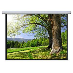 Экран моторизованный Memory Specialist1:1 MSPSAB167(3,0x3,0 m).