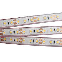 Лента RTW 2-5000PGS 12V White 2x (3528, 600 LED, LUX)