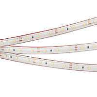 Лента RTW 2-5000PS 12V White6000 (3528, 300 LED, LUX)