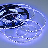 Лента RT 2-5000 12V Blue 5mm 2x (3528, 600 LED, LUX)